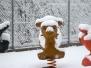Nevica (ancora) (21-02-2013) - Foto di Adriano Barachetti