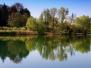 Quel ramo del lago (30.03.2011). Foto di Adriano Barachetti