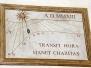 TRANSIT HORA 2 (03-08-2013) - Foto di Adriano Barachetti, Sergio Colombo e Sergio Vaccaro