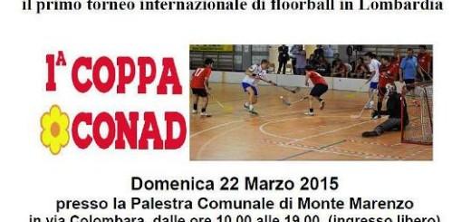 floorball - Copia
