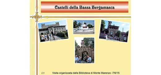 format_panel_web-castelli