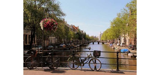 format_panel_web-amsterdam