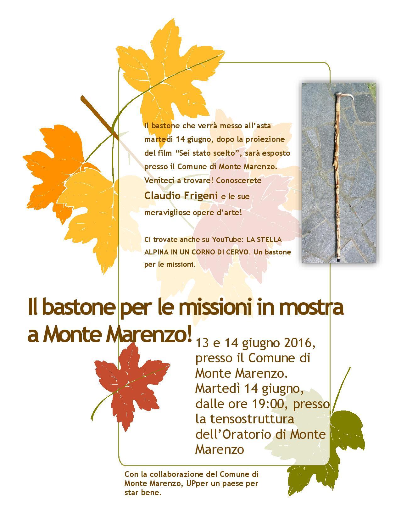 Il bastone per le missioni in mostra a Monte Marenzo-page-001