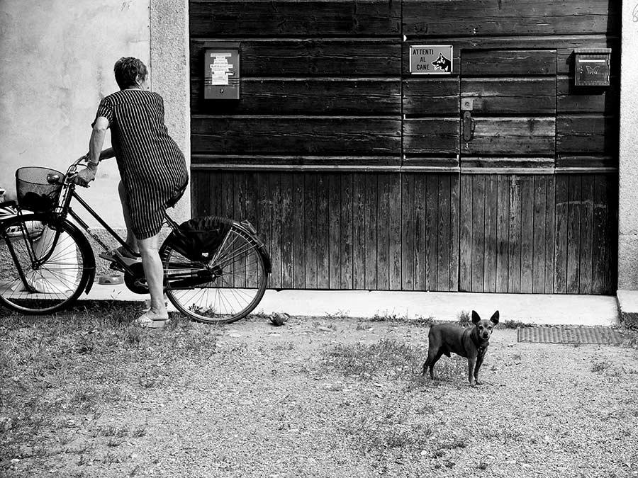 attenti-al-cane