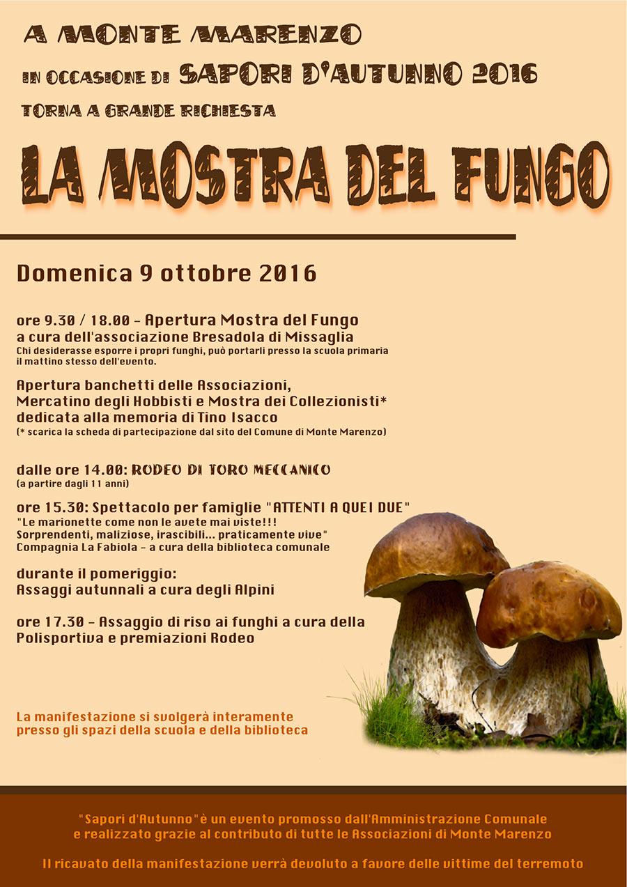 volantino_sapori_2016_def
