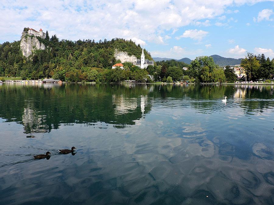 Lago-Bled-riflesso