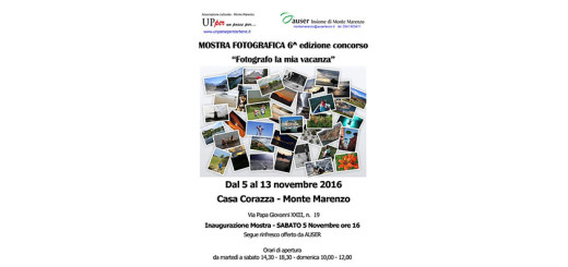 format_panel_web-mostra