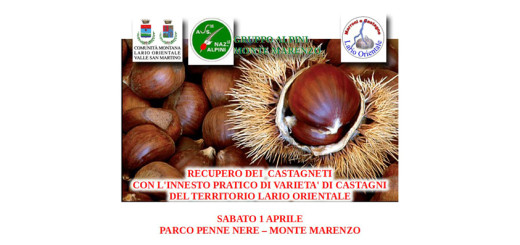 castagne_panel