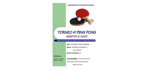 format_panel_web-ping