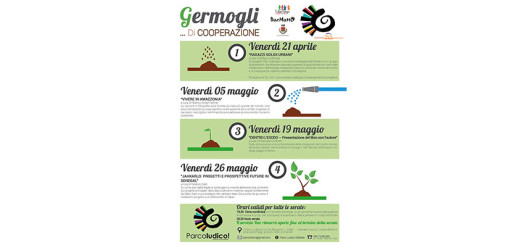 format_panel_web-germogli