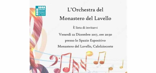 orchestra_lavello_panel